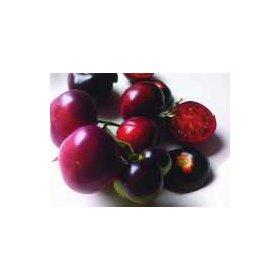 Graines Bio Tomate Cerise Indigo Clackamas Blueberry