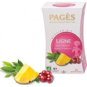 Infusion LIGNE Maté Thé Vert Ananas Cranberry BIO Pagès