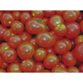 Graines Bio Tomate Rouge très précoce Glacier BIO Kokopelli