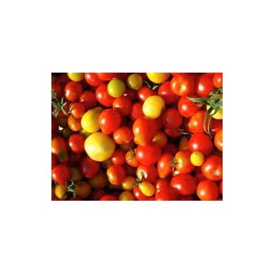 "Mélange Tomate Cerises"" Bio"