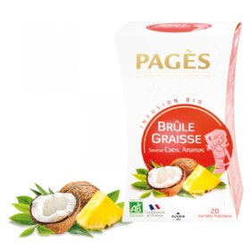 Infusion BRULE GRAISSE Coco Ananas BIO Pagès