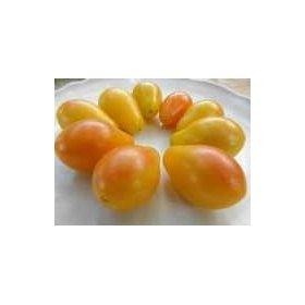 Graines Bio Tomate Cerise Jaune Submarine Blush Cherry