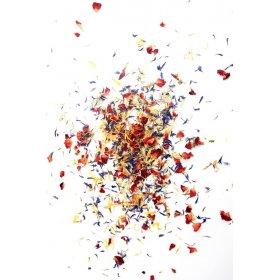 Mélange de Fleurs pour Salades Savor et Sens