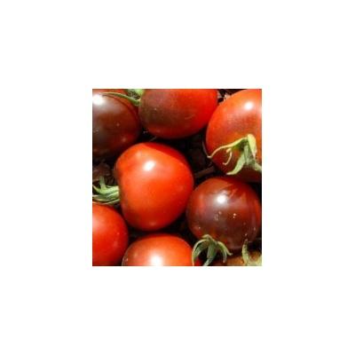 Graines Bio Tomate Alki Blue Blood Blueberry
