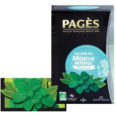 Thé Vert Menthe Intense BIO Digestion Pagès