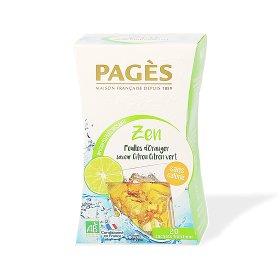 Infusion Rafraîchissante Citron Citron Vert BIO Pagès